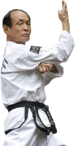 Großmeister Kwon, Jae-Hwa